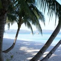 вид из просеки пальмы кокосовые
