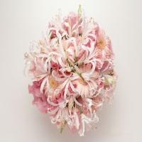 тема о различных цветочках разных сортов